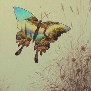 Серия прозрач.бабочки.1